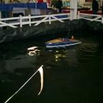 Random image: PondKingfisher3
